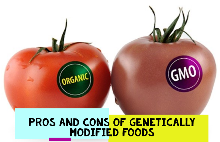 Pros and Cons of Genetic Modified Food