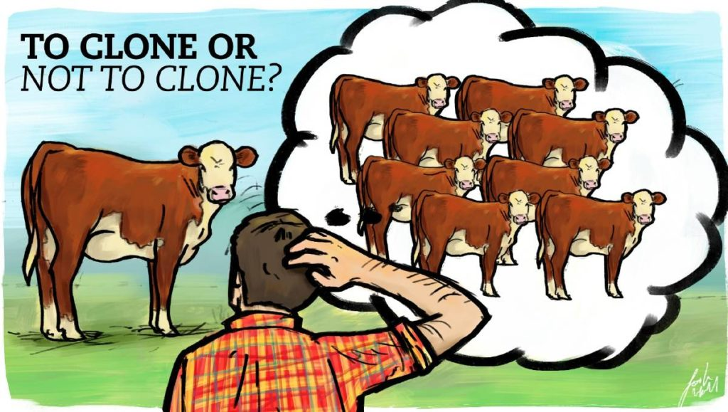 Pros and Cons of Cloning